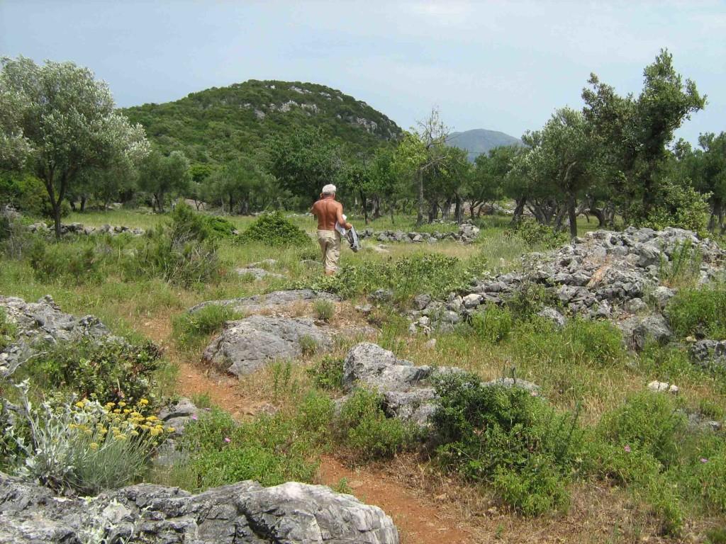 Katamaran-Tour mit Wanderung