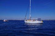 Segelboot-Ausflug Zadar Telascica