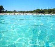 Sakarun Beach Ausflug Zadar