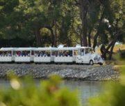 Bootsausflug Nationalpark Brijuni ab Pula