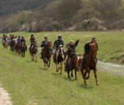 Reiten in Istrien