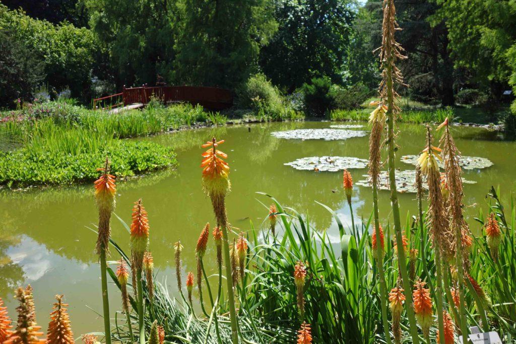 Botanischer Garten Zagreb