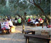Dalmatinischer Abend mit Weinprobe und Essen