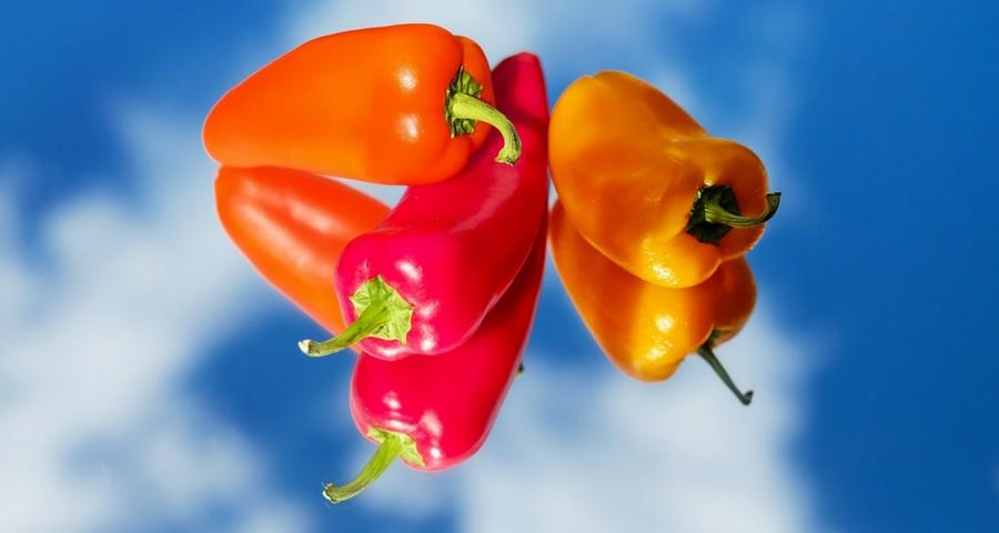 Gemüsesorten auf Kroatisch