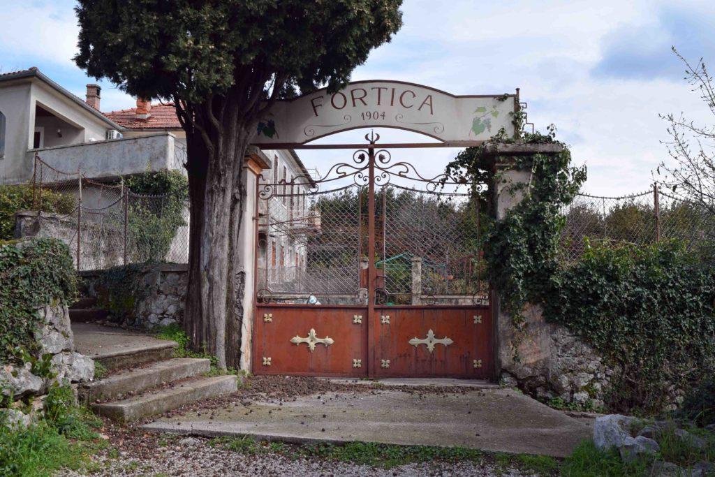 Waldweg Carmen Sylva Vela Fortica
