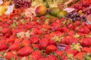 Marktbesuch und Kochkurs in Zadar