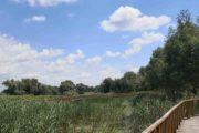 Naturpark Kopacki rit Kroatien