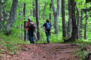 Medvednica Wandern bei Zagreb Kroatien