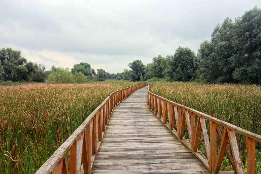 Spaziergang im Naturpark Kopacki rit