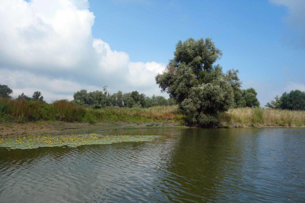 Bootstour im Naturpark Kopacki rit