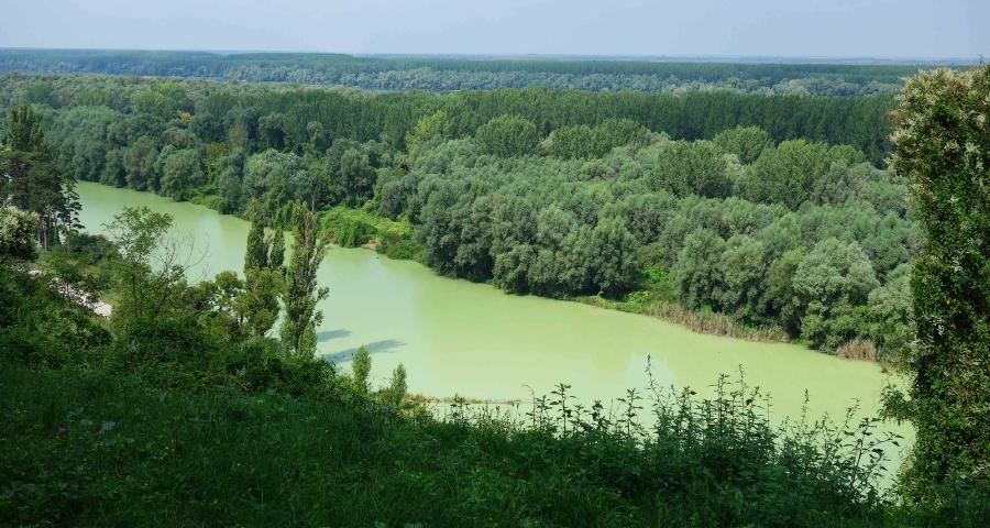 Aussicht über die Donau in Ilok