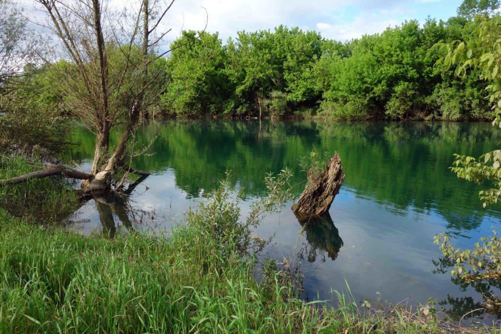 Ufer der Korana bei Karlovac