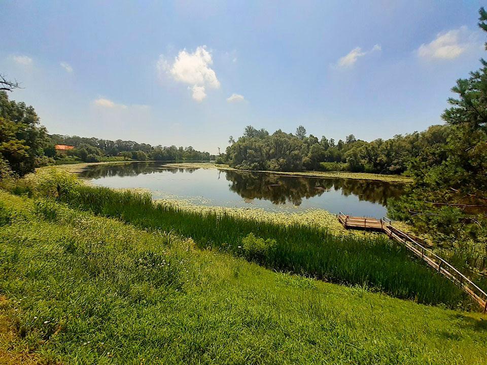 Fluss Save im Naturpark Lonjsko Polje